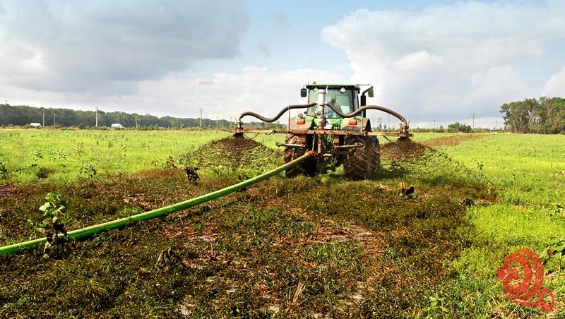 Аренда шланговых систем внесения навоза в почву